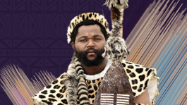 A NIGHT WITH SJAVA